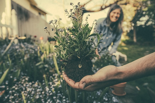 migliori strumenti giardinaggio